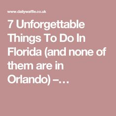 7 Unforgettable Things To Do In Florida (and none of them are in Orlando) –…