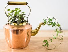 How To Plant in a Kettle Spout - Butterflies and Baubles