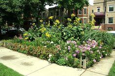 10 Gardens Prettier Than a Lawn