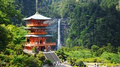 CNN Article: World's Best Unknown Hike: Kumano Kodo... One of the highlights. Nachi Falls, at 133-meters high, is the biggest waterfall in Japan. It steals some spotlight from the last grand shrine, Kumano Nachi Taishai. This picture was taken at a top-secret sweet spot, shared by the local head priest. I promised not to tell. So forget about the viewing platform near the Taishai.