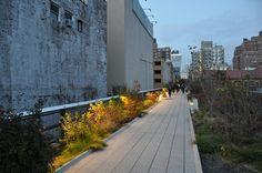 Oudolf ~ High Line, New York, NY.               _/\/\/\/\/\_