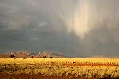 Deeply fascinating: Sossusvlei, Namibia