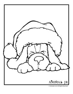 Christmas Printables: Puppy Coloring Pages Christmas Puppy Coloring Page 1 – Animal Jr. by MARCIA MAYHEW