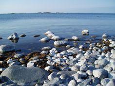 Plans for the season Jurmo Archipelago, Dolphins, Finland, Denmark, Norway, Sailing, Villa, Seasons, Dance