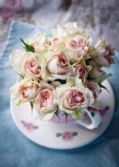 Baby Rose tea