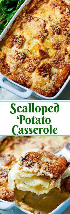 Scalloped Potato Casserole- torn pieces of bread on top soak up the sauce and get super crispy and golden.