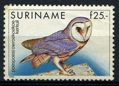 Owl postage stamp