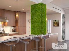 parete-vegetale-cucina