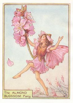 The 372 best flower fairies images on pinterest in 2018 cicely buy antique flower fairy art 1920s 1950s guaranteed old mightylinksfo