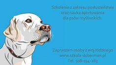 szkolenie psów myśliwskich