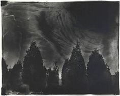 Untitled [Fredericksburg # 22], Sally Mann