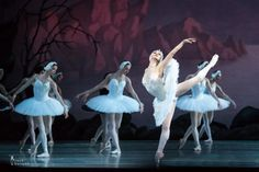 Anastasia Kolegova in Swan Lake at Mariinsky Theatre  Mariinsky Theatre 18.5.2013, photo courtesy Jack Devant