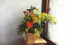 potted flower【M】 - THE LITTLE SHOP OF FLOWERS