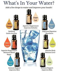 What's in your water? ✨Healing Oils✨I LOVE adding our doTERRA essential oils in our water for not only the delicious taste but the health benefits! Healing Oils, Aromatherapy Oils, Essential Oils Guide, Essential Oil Diffuser Blends, Doterra Essential Oils, Doterra Blends, Essential Oil Detox Water, Cedarwood Essential Oil Uses, Essential Oils For Depression