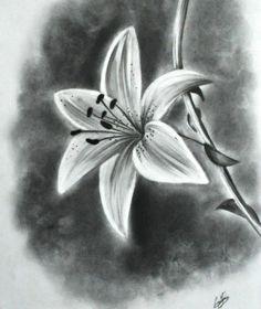 dibujo de la flor