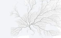 A new infographic answers the question: Do all roads really lead to Rome? A new infographic investigates if all roads really do lead to Rome. By MOOVEL LAB Interactive Infographic, Interactive Map, 3d Data Visualization, Rome Map, Continents And Countries, Roman Roads, Empire Romain, Ancient Rome, Roman Empire