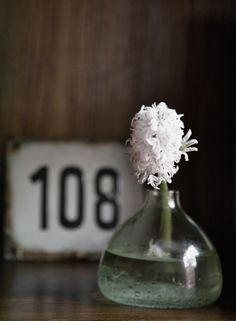 Glass flower vases - Stem Flower Shop - Nalata Nalata