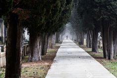 » La pareja paseante del camposanto Hodari Fotoblog