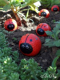 Golf balls painted as ladybugs…a cute idea for a kid's garden!