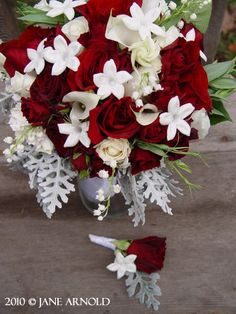 Bride Bouquet @ Double Tree wedding.  Red roses and spray roses, white mini callas, stephanotis, dusty miller and lily of the valley. Flowers and photo by The Wild Orchid floral design in Sebastopol.