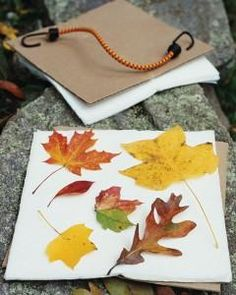 14 Nature Crafts for Kids