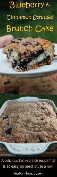 BLUEBERRY AND CINNAMON STREUSEL BRUNCH CAKE. This simple recipe earns rave reviews every time. Perfect for brunch, after school or any occasion! by tamera