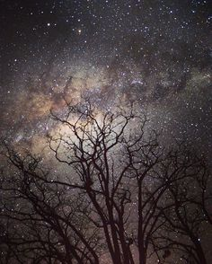 Silent starry sky. #milkyway#nightsky#farmlife#serenety#goudini#vredefortdome#freestate#southafrica Milky Way, World Heritage Sites, Night Skies, Sky, Celestial, Instagram Posts, Outdoor, Heaven, Outdoors