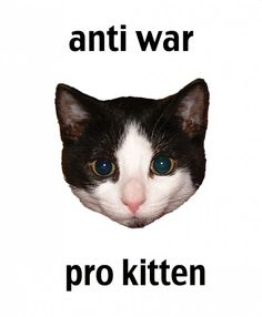 Anti War Pro Kitten...Meow^-.-^(: