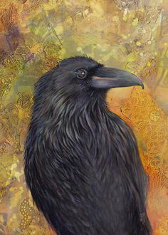 by Darlene Fletcher - Haida Gwaii Raven Fine Art Prints and Posters