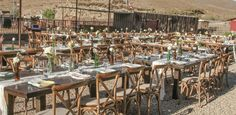 Down at the ranch for a truly authentic themed rustic wedding! Farm Wedding, Rustic Wedding, Wedding Reception, The Ranch, Green And Gold, Event Planning, Special Events, Table Settings, Farmhouse