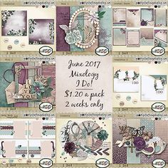 Mixology packs by MDD Designs only $1.20 until July 7th. and take 30% Mix &Match template pack until the end of June!