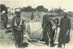 Pavage des rues un niveau des villes en 1920 Egypte