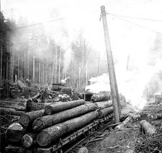 Loading logs onto railroad cars using gin pole, probably Oregon :: Industries and Occupations Photographs