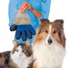 Pet Grooming Glove Brush  Remove and trap loose pet hair so that no fur goes flying  Stop chasing your pet wear this grooming glove and they'll come to you a pet session they'll love  Perfect for all coat types, short, medium and long  Adjustable Velcro strap makes this grooming mitt fit all hands.