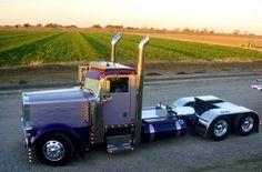 Peterbilt day cab Show Trucks, Big Rig Trucks, Dump Trucks, Peterbilt 359, Peterbilt Trucks, Custom Big Rigs, Custom Trucks, Customised Trucks, Diesel Cars