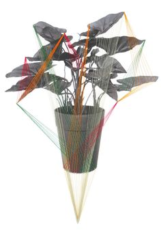 Threaded plant art print by Hagar Vardimom-van Heummen