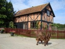 The Granary, Hingham, Norfolk, England, Pet Friendly, Accepts Dogs & Small Pets.