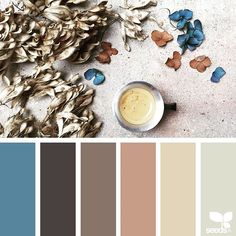 SnapWidget | today's inspiration image for { color arrange } is by @clangart ... thank you, Chantal, for another awesome #SeedsColor image share!