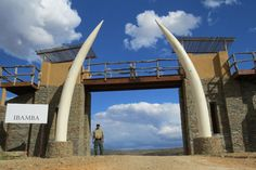 Gallery   Ibamba Private Game Reserve   Luxury Game Lodges   Eastern Cape   South Africa Game Reserve South Africa, Game Lodge, Private Games, Port Elizabeth, Lodges, Continents, Safari, Wildlife, African