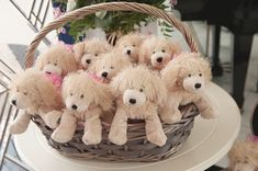 Love this.... parody of Bridesmaids movie for a real bridal shower!  Lol - the puppy favors!