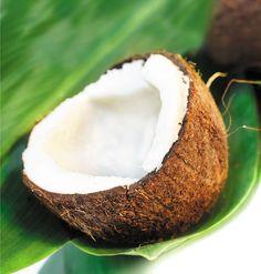 Miracole şi Beneficii Ascunse în Nuca de Cocos