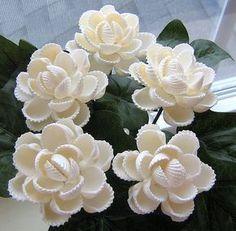 5 ark shell seashell flowers   by oceanbloomsnow