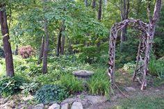 Asheville Organic Mountain Homestead: Woodland Garden