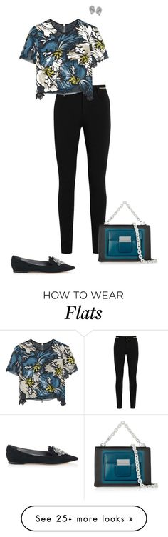"""Untitled #763"" by biancateicu on Polyvore featuring Givenchy, Erdem and Balenciaga"