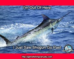 """Wild Blue Fishing Charters runs several boats, Wild Blue and Shogun. Shogun is the vessel we use to do our week long fishing trips through the islands of Vanuatu. A sticker that we have in the back of the boat is """"Fish Fear Us"""""""