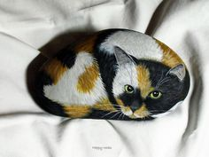 CALICO by rockpainting , yvette, via Flickr