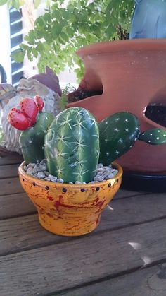 Painted rock cactus easy to grow. Did this in an afternoon very therapeutic!