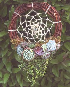 Pin by Tenille Woods on Crafts Succulent Gardening, Planting Succulents, Succulent Wreath, Succulents In Containers, Succulent Arrangements, Floral Bouquets, Diy Wreath, Holiday Wreaths, Trees To Plant