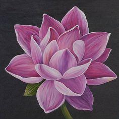 Original Botanic Painting by Liubov Kvashnina Lotus Flower Seeds, Lotus Flower Art, White Lotus Flower, Lotus Art, Watercolor Lotus, Lotus Painting, Acrylic Painting Flowers, Lotus Drawing, Flower Art Drawing