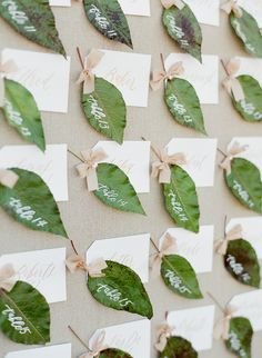 Calligraphy and Design by: Written Word Calligraphy // Calligraphy on Leaves // Escort Card Wall // Joy Proctor // Jose Villa //